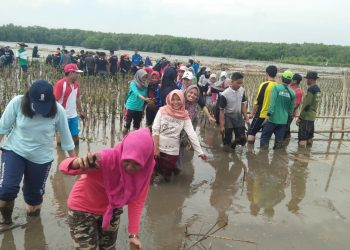 Ikatan Mahasiswa dan Pelajar Blora (IMPARA) ikuti penanaman 11.000 Mangrove di pesisir Pantai Pantura Mangkang bersama Komonitas LindungHutan. Minggu(16/12/18)